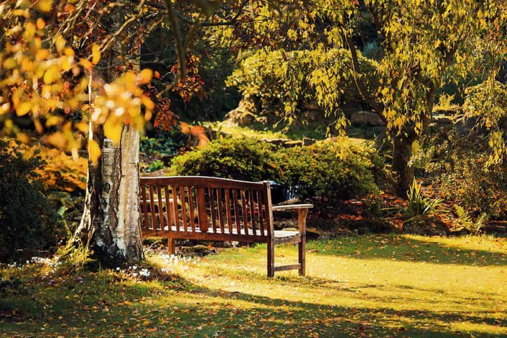 Drevený záhradný nábytok v parku