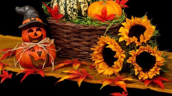 Tipy na jesenné dekorácie