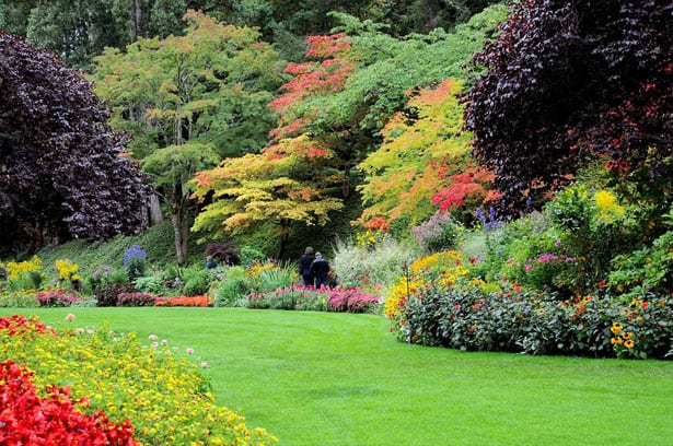 autumn-full-perennial-border
