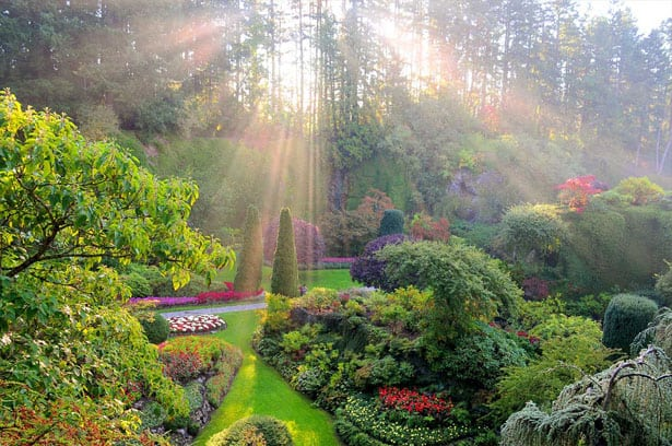 autumn-full-sunken-garden-light