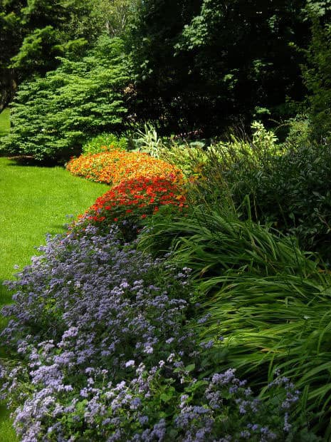 kvetinovy-zahon