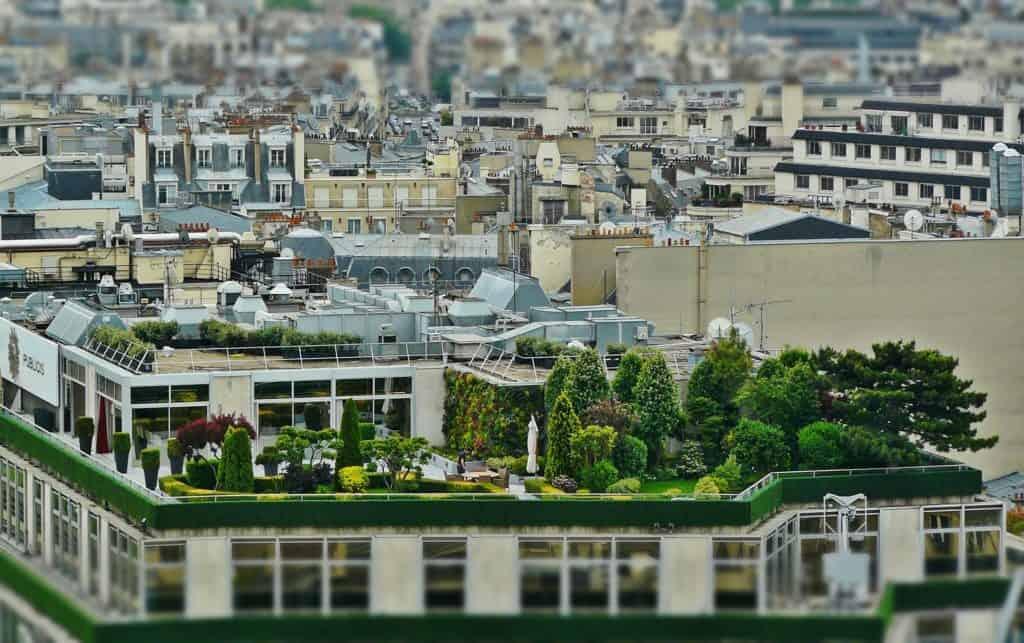 Zelená strecha a jej uplatnenie