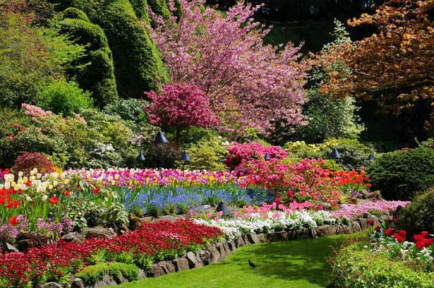 spring-full-sunken-garden-bloom