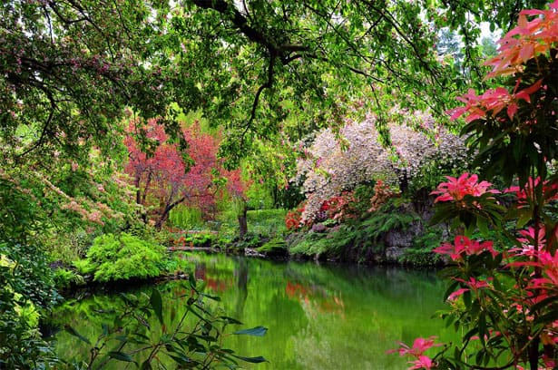 spring-full-sunken-garden-lake