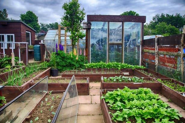 uzitkova-zahrada-sklenik