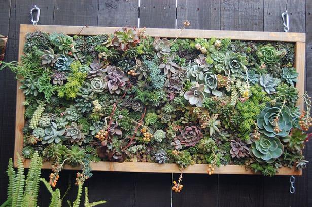 vertikalna-zahrada