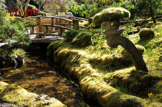 winter-full-japanese-garden-moss