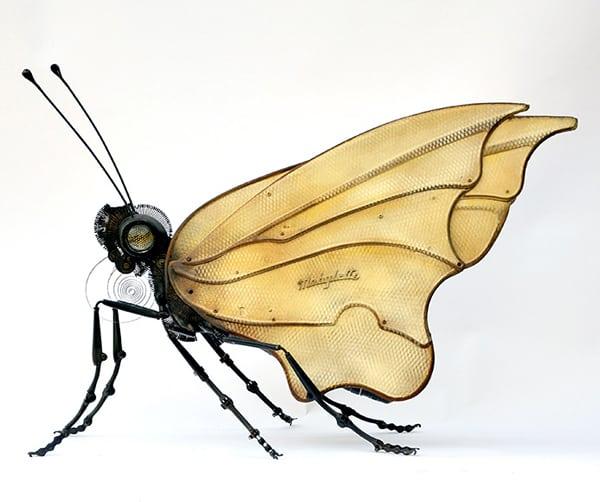 Edouard Martinet - motýľ