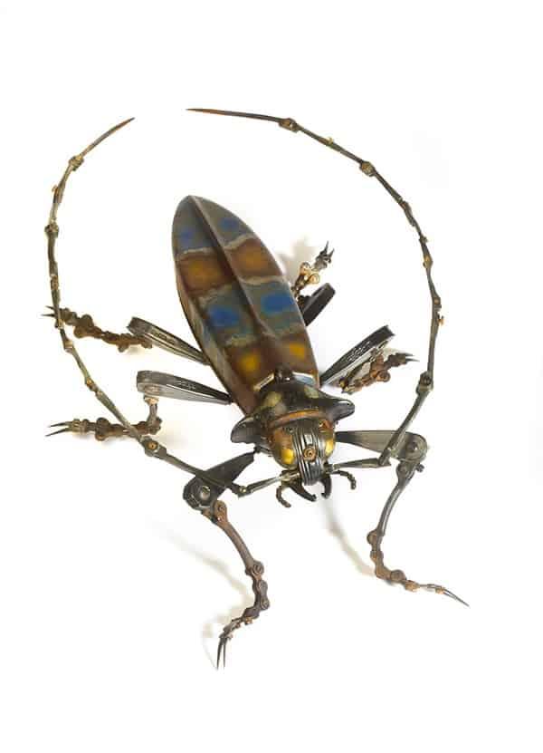 Edouard Martinet - šváb