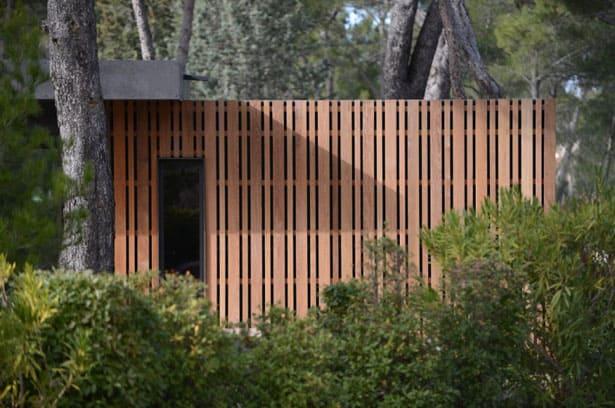 dom-v-lese