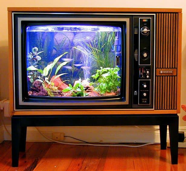 aqarium-tv