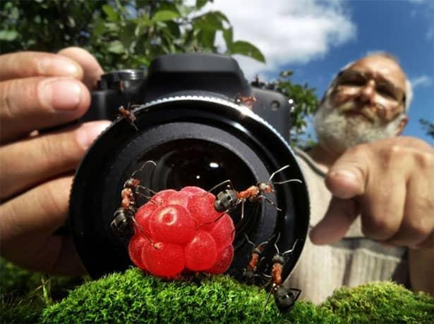 pavlov-fotograf