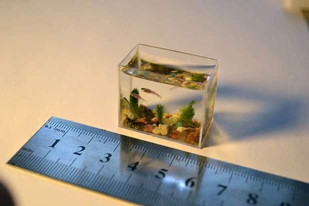 Miniatúrna sklenená kocka