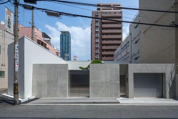 house-for-podocarpus3