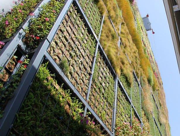 vertical-garden (2)[10]