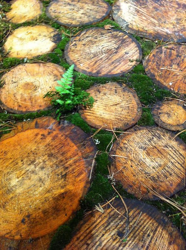 dreveny-chodnik