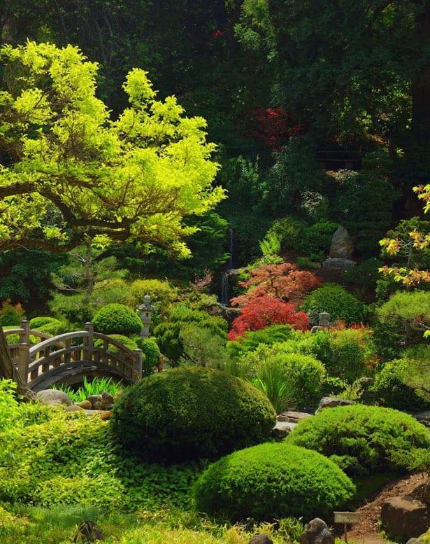 hakone-gardens