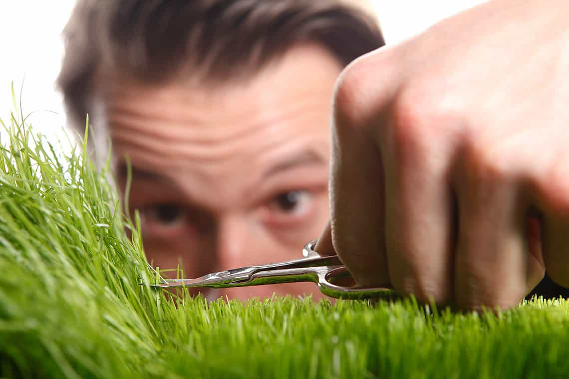 Trápi vás škaredý a tvrdý trávnik?