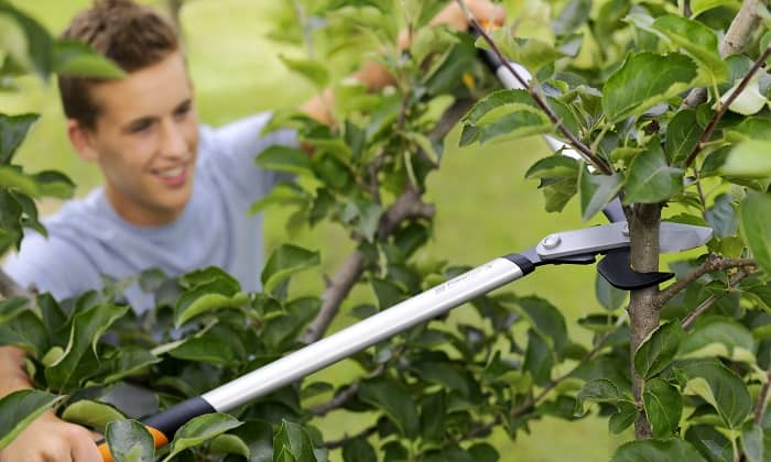 Fiskars_Garden_Action_PowerGearX
