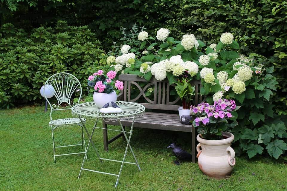 garden-948559_960_720