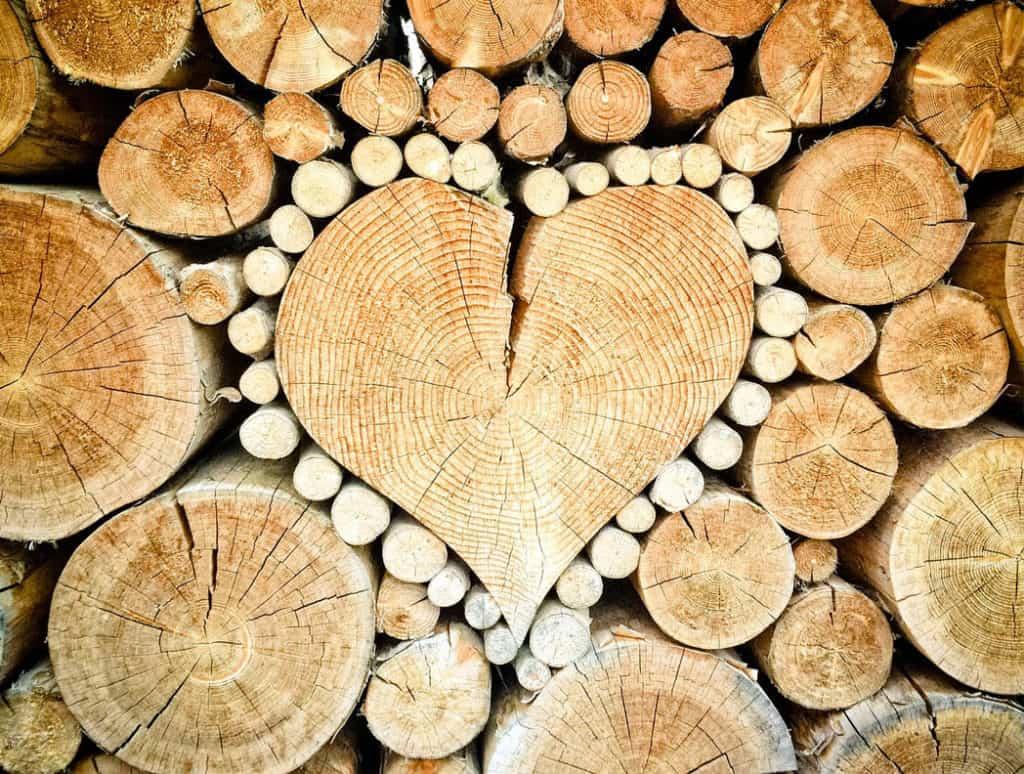 Estetické ukladanie dreva ako nový umelecký smer