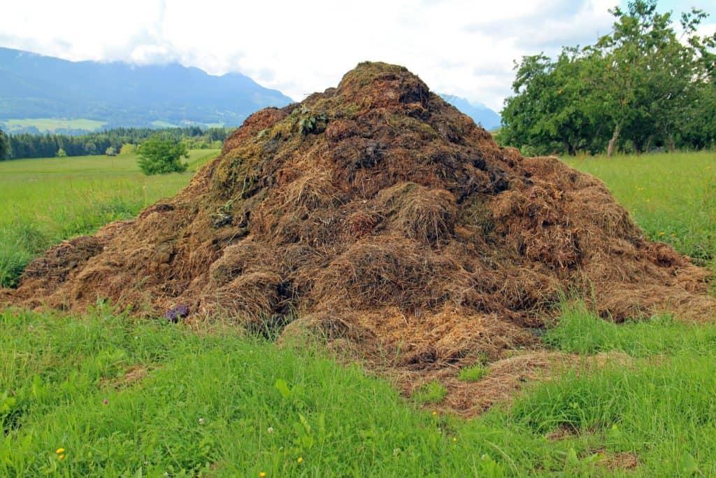 Hnoj - bio hnojivo