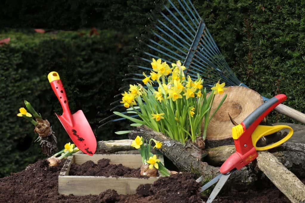 Príprava na sadenie - máj v záhrade