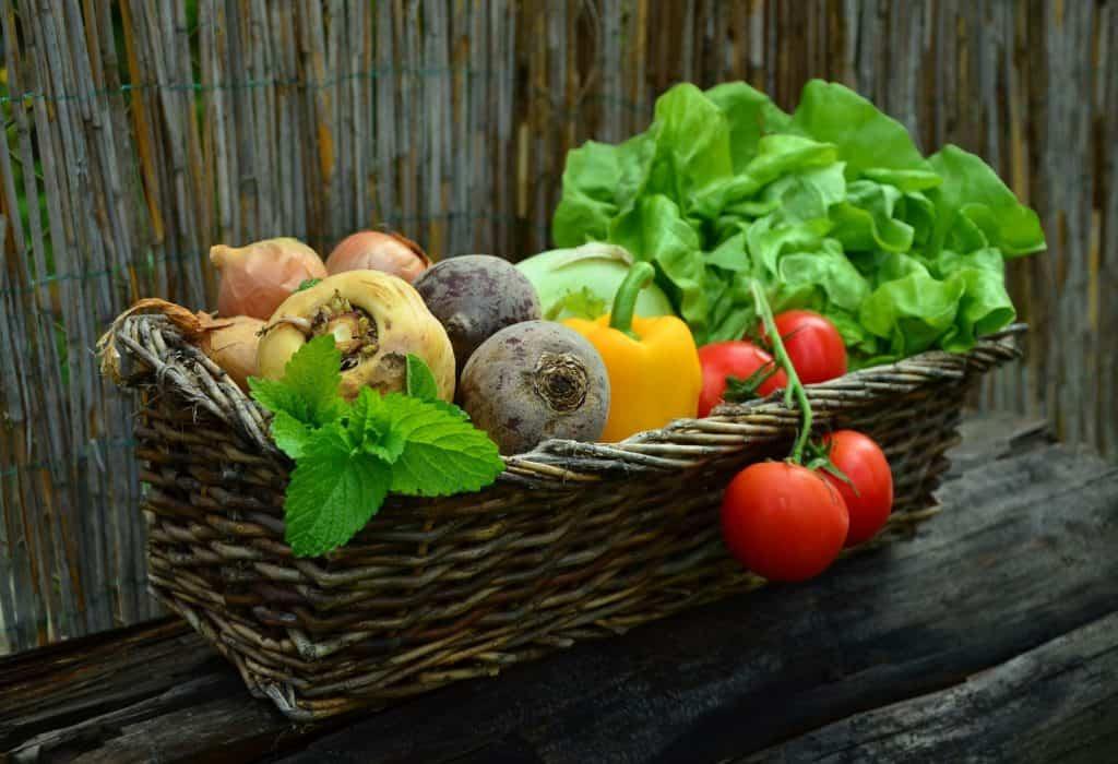 zeleninový kôš