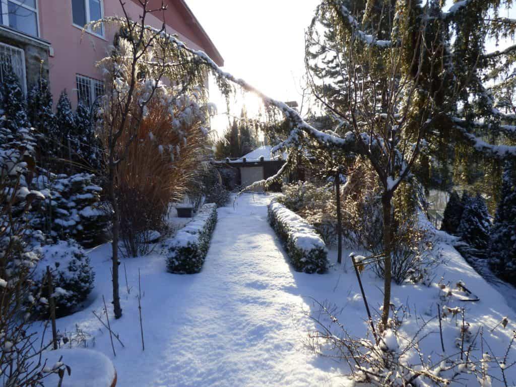 Na zimu treba myslieť už pri plánovaní záhrady