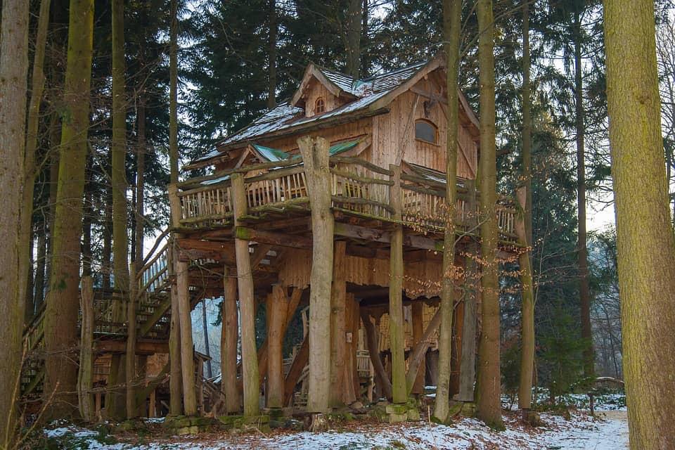 Domy na stromoch
