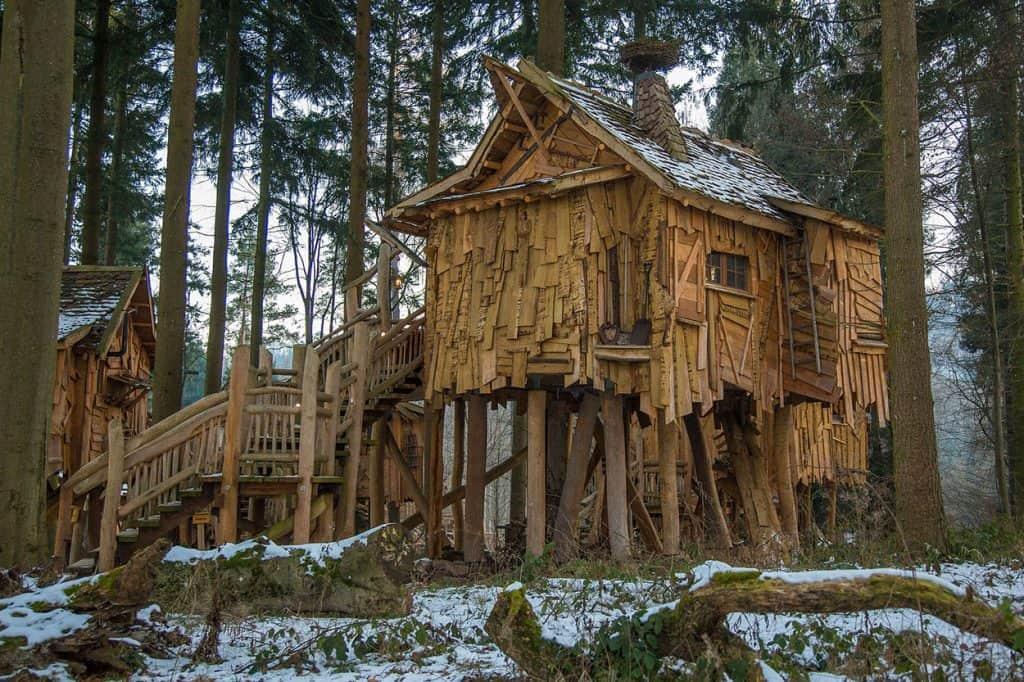 Domy na stromoch – získajú si popularitu aj u nás?
