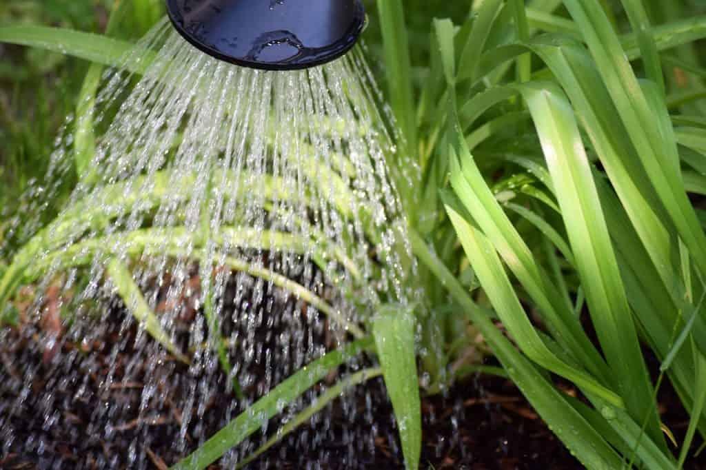 Rady k správnemu hospodáreniu s vodou v záhrade