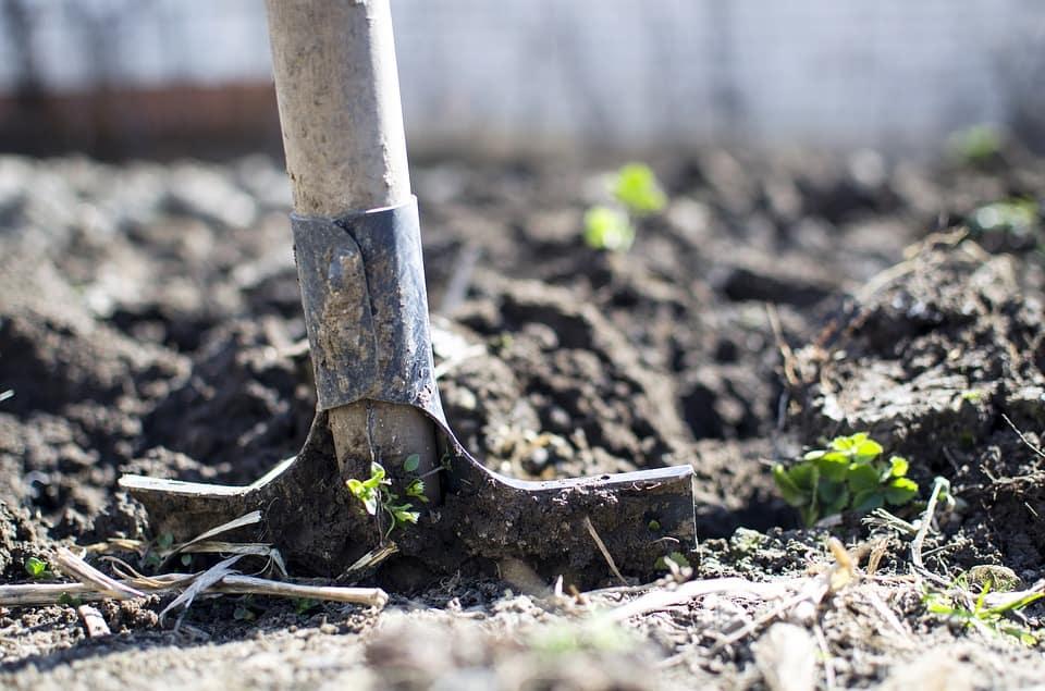 rýľovanie záhrady na jeseň