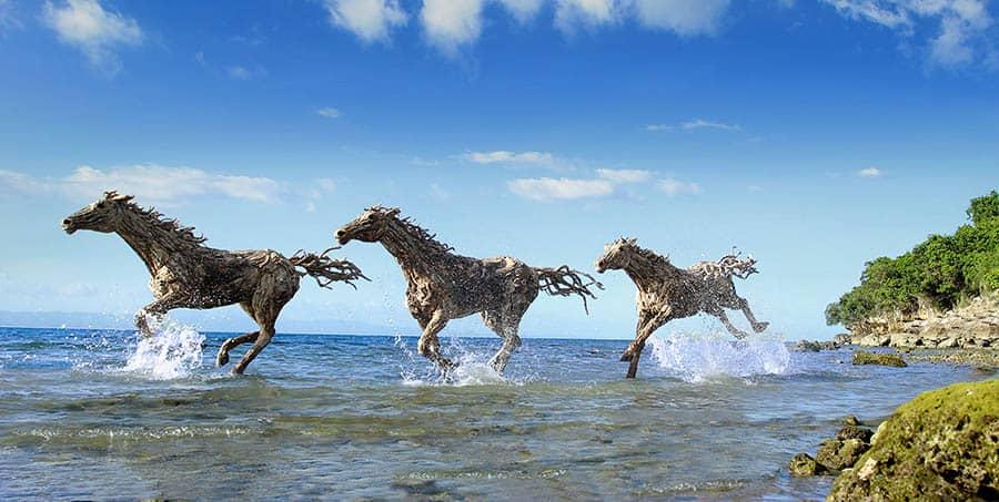 Drevené kone