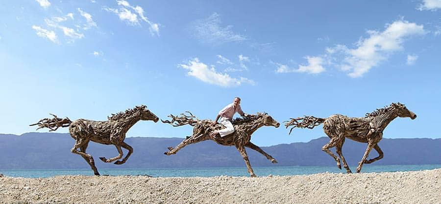 Kone vytvorené z naplaveného dreva