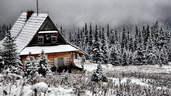 O ekologické bývanie v drevodomoch je stále veľký záujem