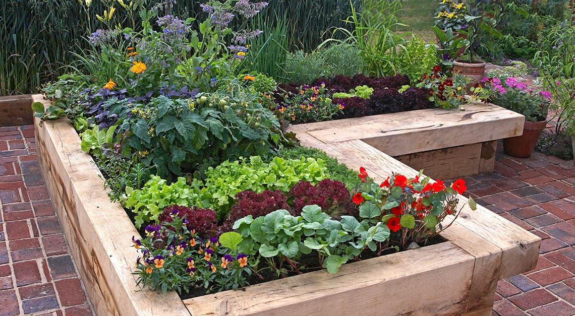Prečo záhradkári obľubujú vyvýšené záhony?