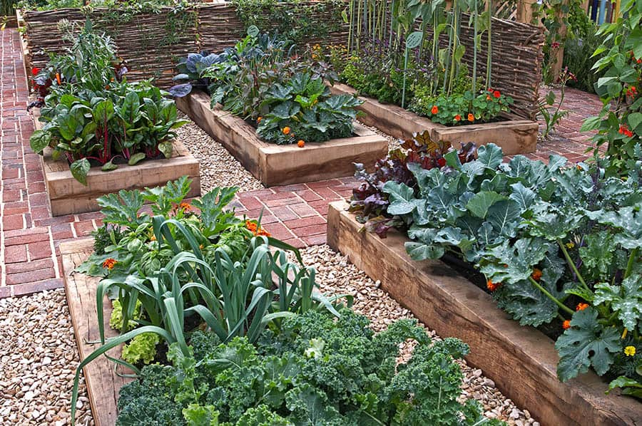 Vyvýšené záhony v záhrade