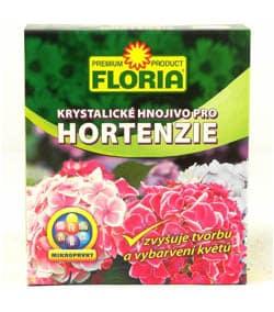 Floria - hortenzia