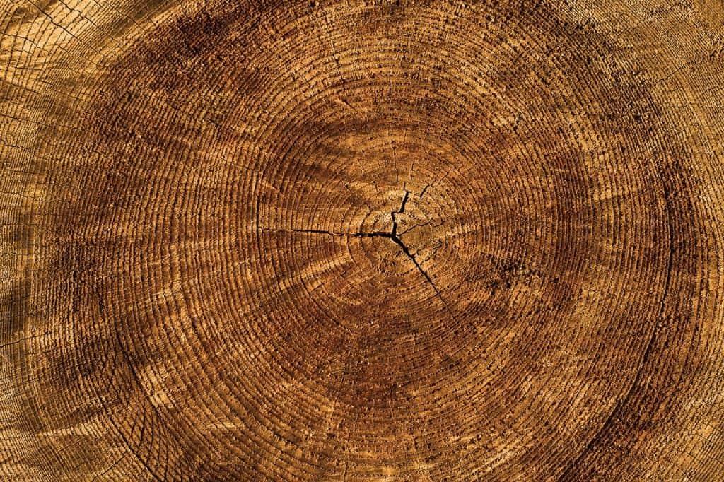 Borovicové drevo - nábytok z masívu