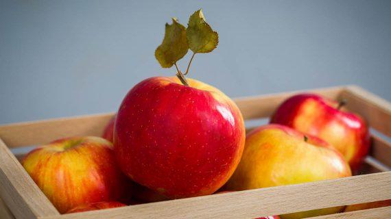 Zaujímavosti o jablkách