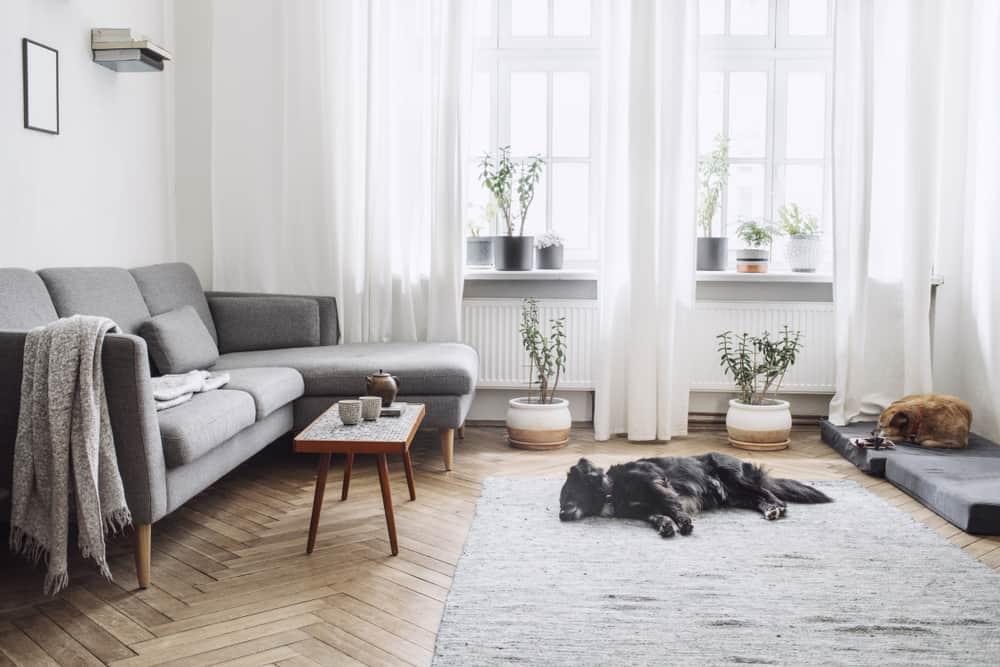 Ako zariadiť interiér