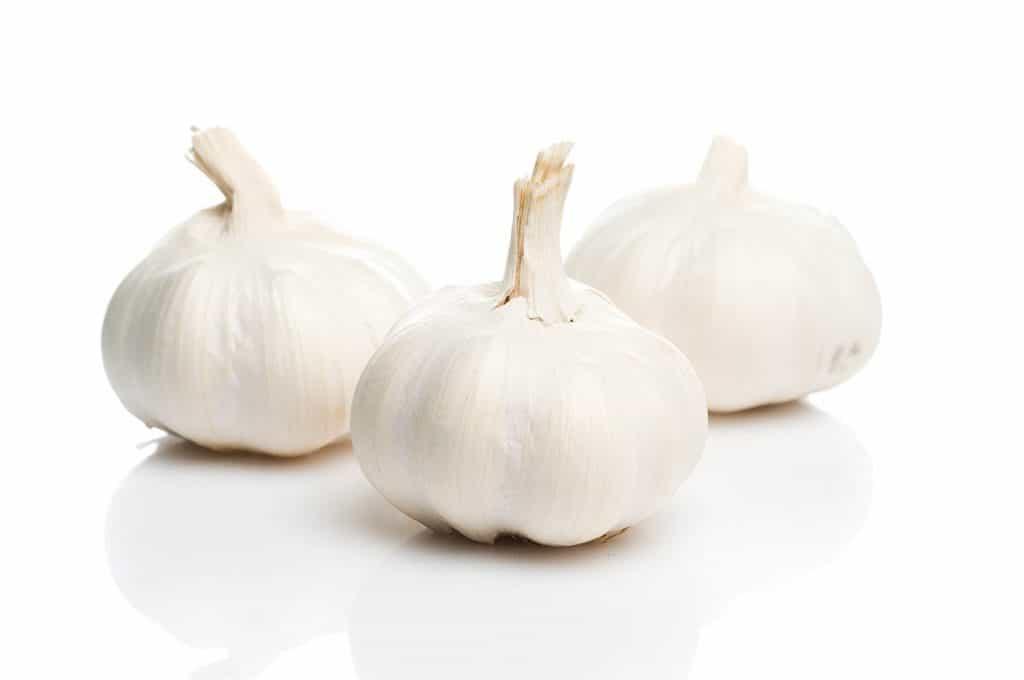 Kedy sadiť cesnak