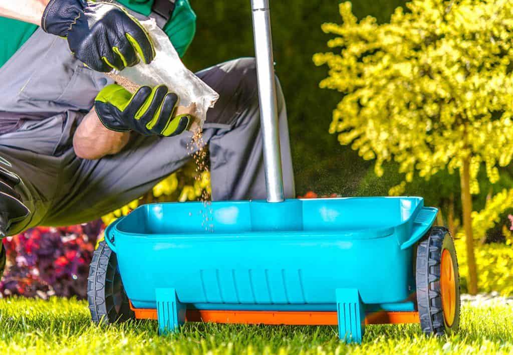 Kedy hnojiť trávnik